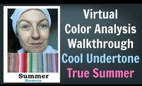 Summer Color Palette - Virtual Colour Analysis | Cool Skin Undertone | What Colors Work for You