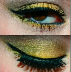 i used nyx yellow a green shadow by MAC and a bh shadow brown