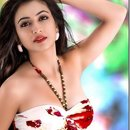 Excessive love offered by Chandigarh Escorts to the guys
