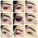 Pictorial on thick brows