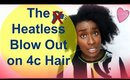 Natural Hair Care Tips: The Heatless BlowOut on Type 4c Hair