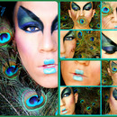 Peacock Collage