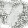 MAC Pigment Frozen White