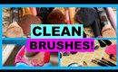 HOW TO DEEP CLEAN MAKEUP BRUSHES!
