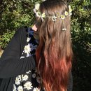 Daisy chain and red ombré