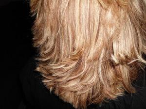 Hair cut 010