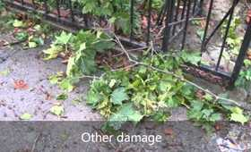 That damage after Hurricane Irene in New Jersey