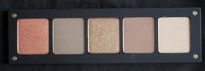INGLOT Palette (AMC Shine 15, M 342, AMC 43, M 357, DS 463)