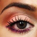 Peachy Pink eye Look