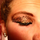 Cheetah Eye