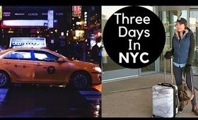 THREE DAYS IN NYC