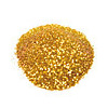 NYX Cosmetics Glitter on the Go Glam Gold
