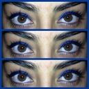 Cobalt Blue Winged Eyes...