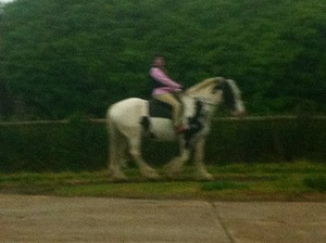 A bad pic but this is my favourite horsie & me <3 :)