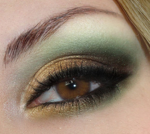 Hunger Games' Katniss Everdeen Inspired Look! Go to my blog to check out what products I used :) http://bowsandcurtseys.blogspot.com/2011/07/hunger-games-katniss-everdeen-inspired.html