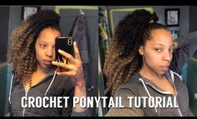 Braidless Crochet Sleek Ponytail Freetress Water Wave | 4c natural hair
