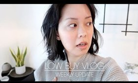 no more guilt | weekly low buy vlogs | Serein Wu