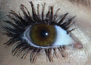 All mine .. Mascara is Voluminious by Loreal