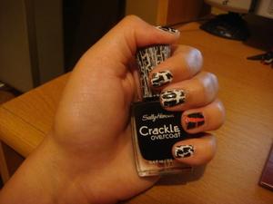 Nails 2011 009