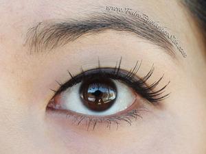 Loving these ultra-natural looking brown false lashes <3 http://blog.falseeyelashessite.com/product-review-elegant-lashes-028-brown-false-eyelashes/