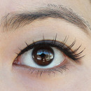 Natural brown false lashes
