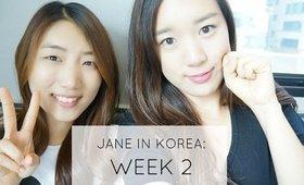 Come Follow Me: Jane in Korea | Week 2
