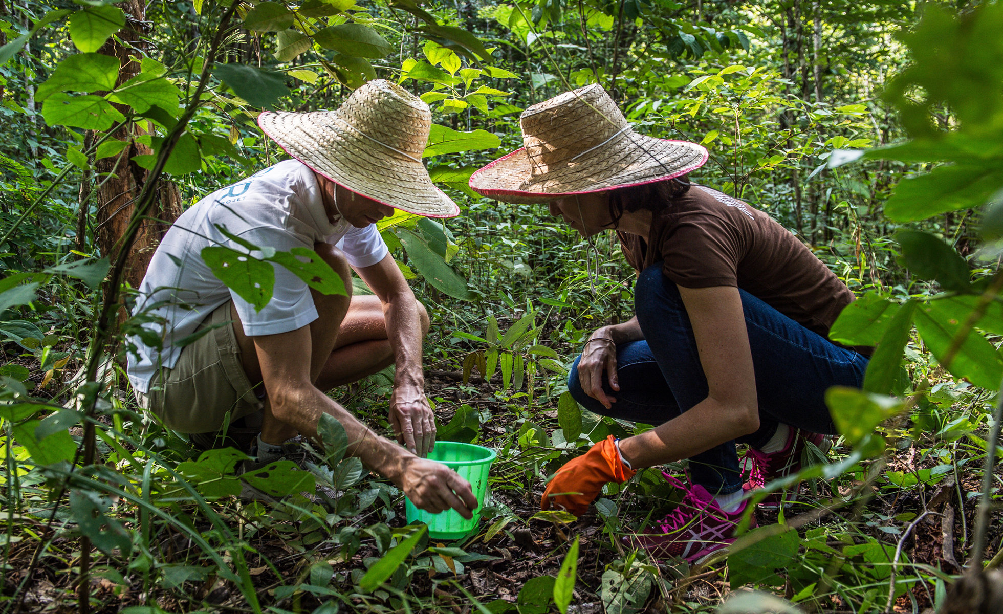 Photo: Caudalie founders Bertrand and Mathilde Thomas planting trees with the PUR Project in 2015.