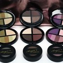 Angie's Cosmetics Signature Shadow Collection