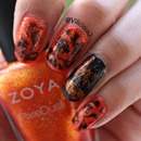 Orange & Black ♥