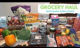 Grocery Haul (Costco, Trader Joe's, Sprouts, WinCo)   VLOGMAS Day 4