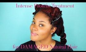 Intense Protein Treatment for Damaged Natural Hair | Samirah Gilli