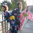 Colorful Yukata at Northern California Cherry Blossom Festival!