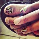 Summer Cheetah