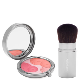 ShineClassic Multi Powder Compact