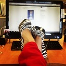 Zebra Shoes!!!!!