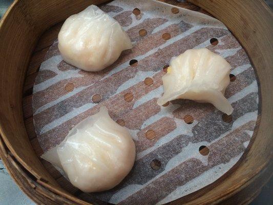 Qianwen X.