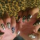 Wild Cheetah :)