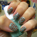 Turquoise and Brown Leopard