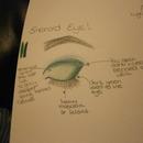 Emerald Eye!