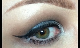 Step by Step Makeup in 15 Seconds: Neutral and Silver Eye Makeup
