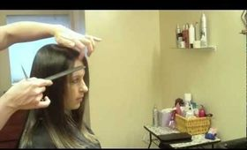 How to do a Dry Haircut: Long Layers, Point Cutting: Haircut Tutorial
