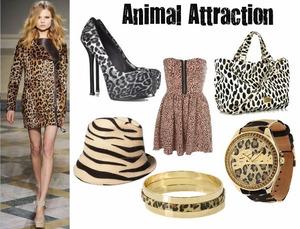 animal-attraction1