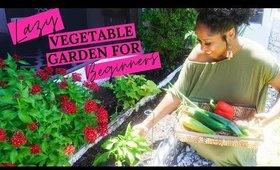 REDOING MY VEGETABLE GARDEN (Lazy gardening for beginners!)