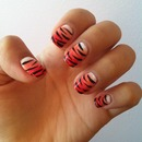 Rawr! Tiger Claws