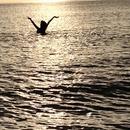 Marco island sun