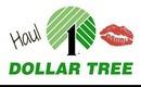Dollar Tree Haul: March 15 2013