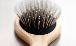 This Easy Step Could Extend the Life of Your Hair Brush