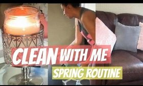 Spring Cleaning Routine | Stay At Home Mom