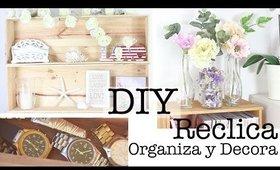 DIY: Organiza y Decora la casa GRATIS  - Reciclando | Alba Badell