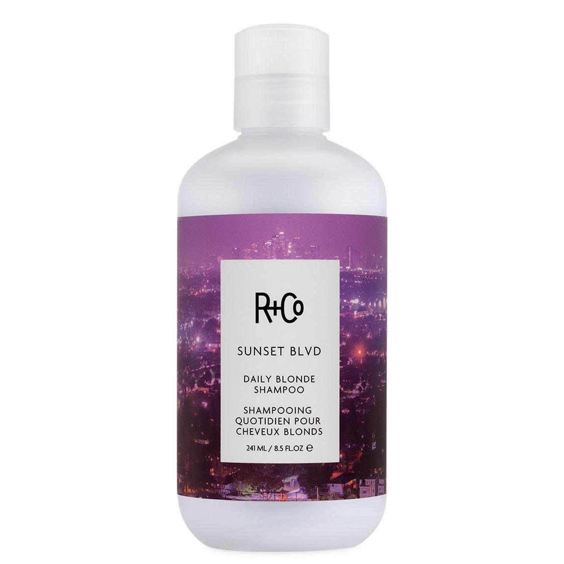 R+Co Sunset Blvd Blonde Shampoo 8.5 oz alternative view 1 - product swatch.